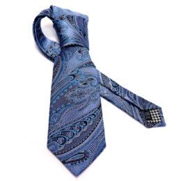 Silk Paisley neck tie C106A